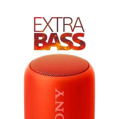 What experts say about Sony Extra Bass SRS-XB10 Portable Wireless Speaker